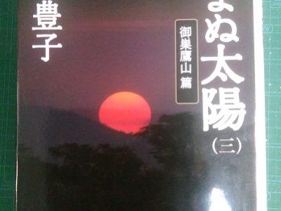 沈まぬ太陽<三>御巣鷹山篇