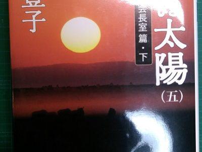 沈まぬ太陽<伍>会長室篇・下