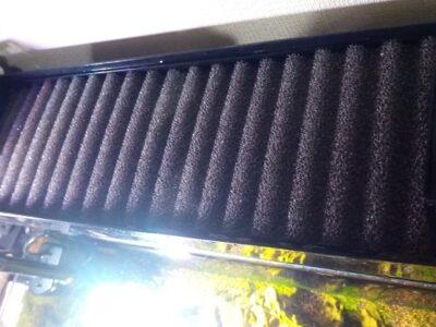 キューブガーデン60cm水槽&グラステリアBZ600S水槽 フィルター濾材交換