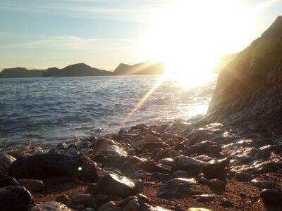 キャンプ 白崎海洋公園キャンプ場